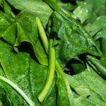Green Godess Soep is heerlijk