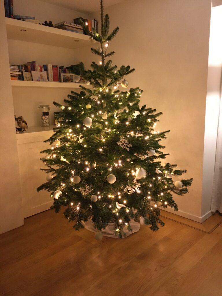 Prettige kerst en geen gelukkig 2021 Lourens Kalverdijk